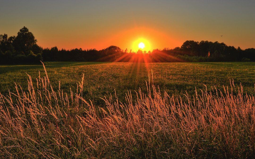Bright Future for Rural Medicine